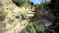 Animal Trail Simi Valley