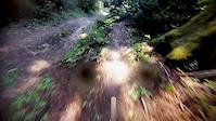 Arcata jump trail- REBORN!