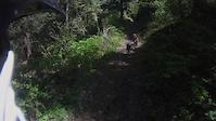 Mountain Lion Scared Shitless (5:15)