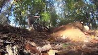 Quick Dead Pine clips