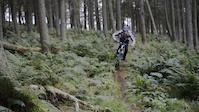 The Biking Squirrel - Luke Griffiths