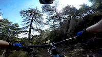 Corsican ride, Ospedale forest