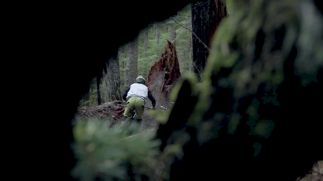 Growth - Alan Mandel Video - Pinkbike